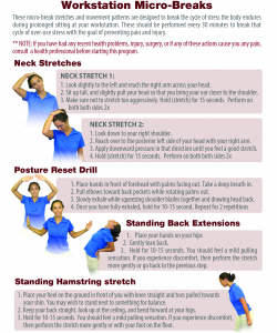 neck pain stretch